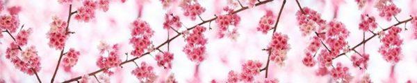 3D Cam Tezgah Alnı / Çiçek
